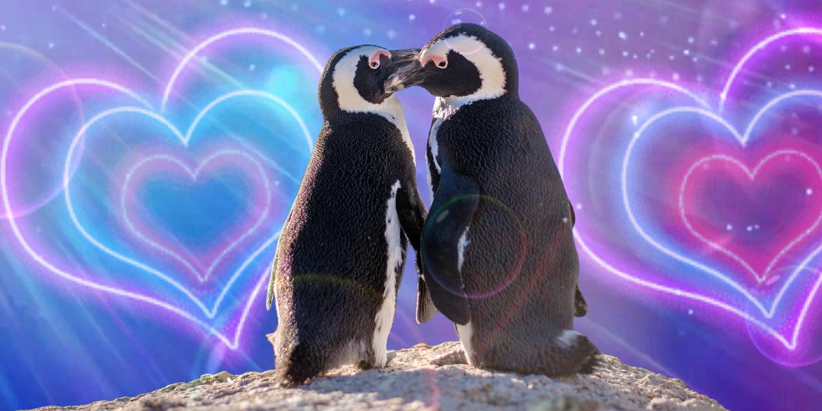 Pingüinos están formando parejas del mismo sexo en un acuario de Londres