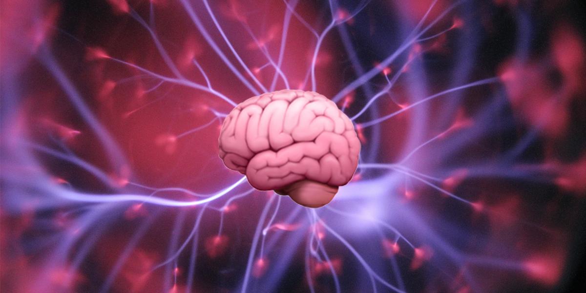 Esto es lo que pasa en tu cerebro tras una ruptura amorosa