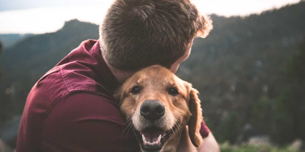 Monty, el perrito que recorrió por última vez sumontaña favorita a bordo de una carretilla