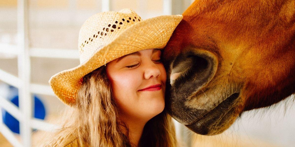 'Doctor Peyo', el caballo que da terapia emocional a pacientes con cáncer